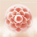 布袋寅泰 - New Beginnings