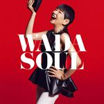 和田アキ子 - WADASOUL