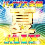 V.A. - バイブス全開 夏MIX